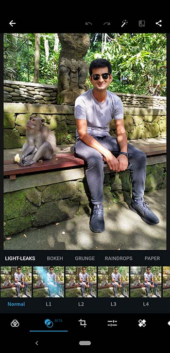 Screenshot of Editor Interface in Photoshop Express