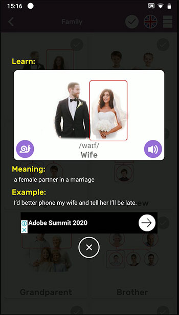 Visual Vocabulary App Interface